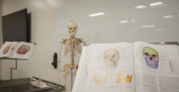 physician assistant classroom with skull and book