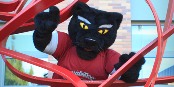 Pete the Panther Fill-in image