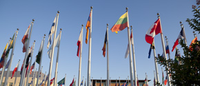 Global Plaza Flags