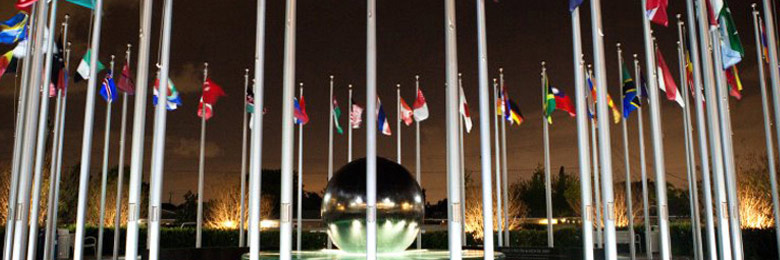 Flags of the world at plaza at night